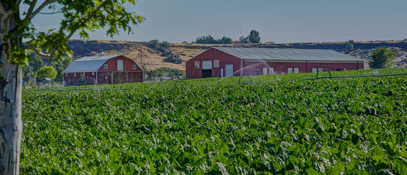 agricoltore sito di incontri USA incontri Stranice Hrvatska